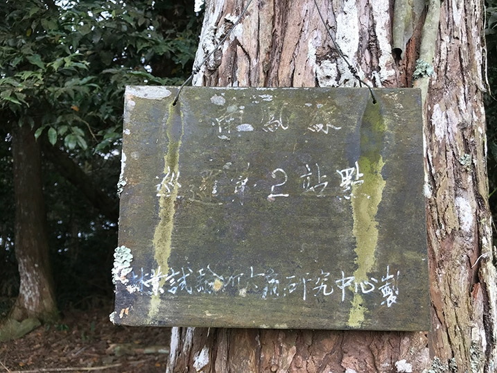 very old sign attached to tree - barely legible Chinese writing on sign