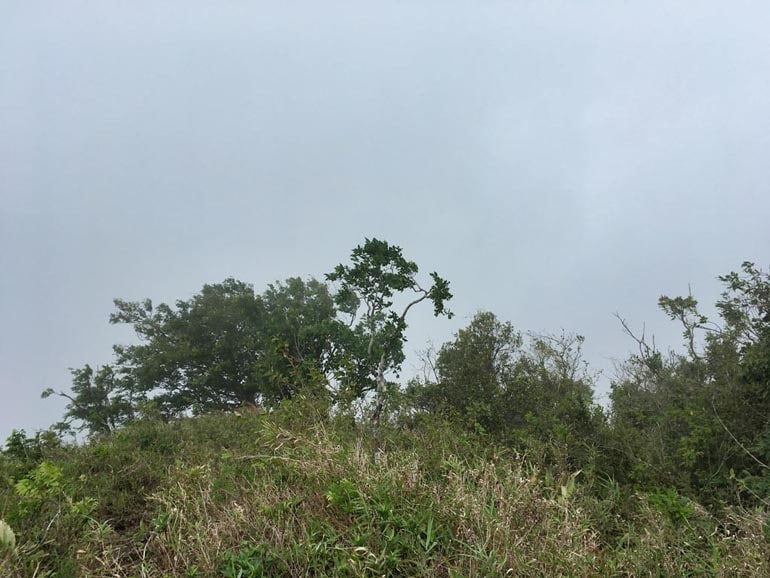 Foggy view on exposed ridge