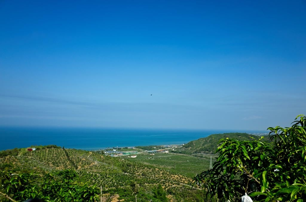 View coast and valley filled with mango trees