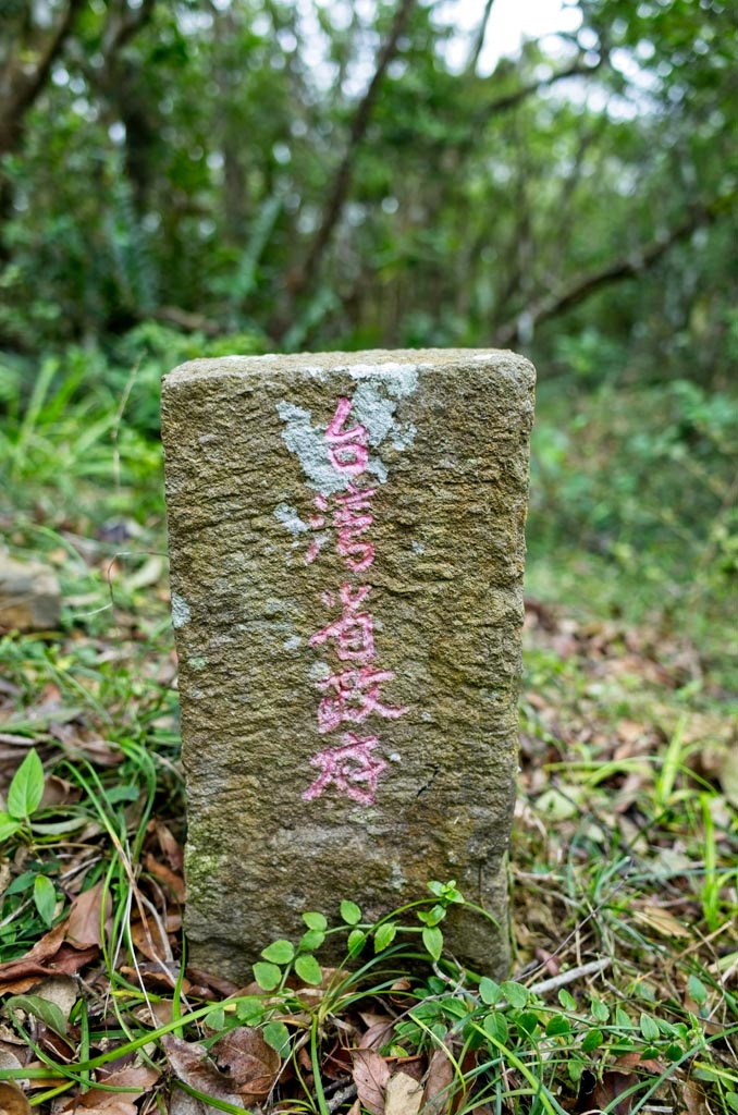 WuLiYi Northeast Peak - 霧里乙山東北峰 triangulation marker