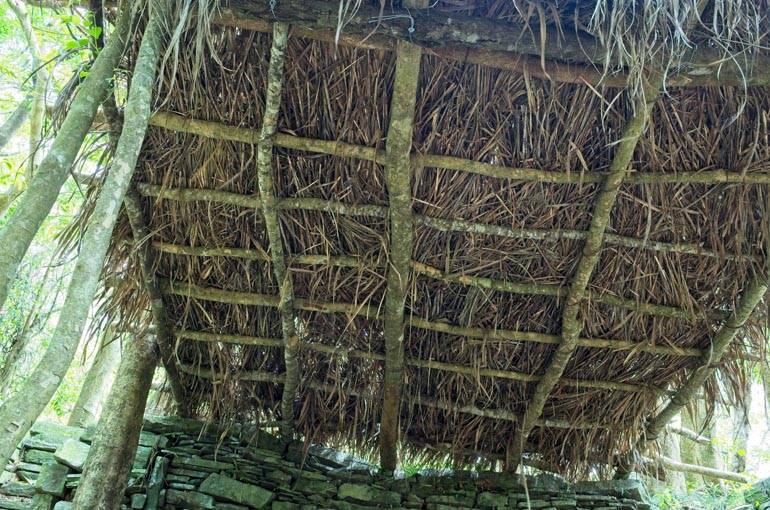 Thatched roof closeup