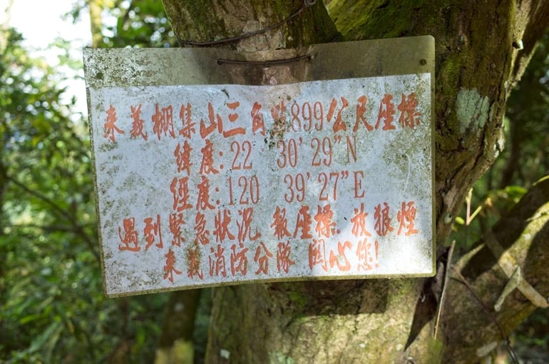 Sign attached to a tree with coordinates and Chinese writing