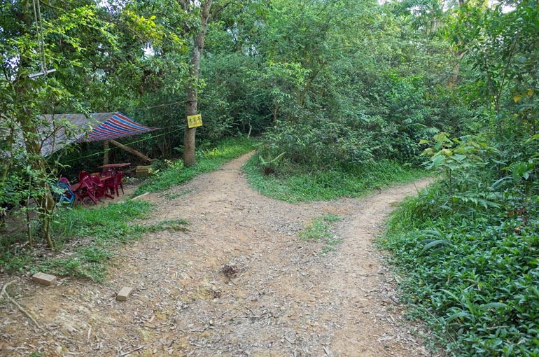 Dirt road - trail off to the right leading up into trees - colorful tarp hung to trees on the left - plastic chairs and table underneath