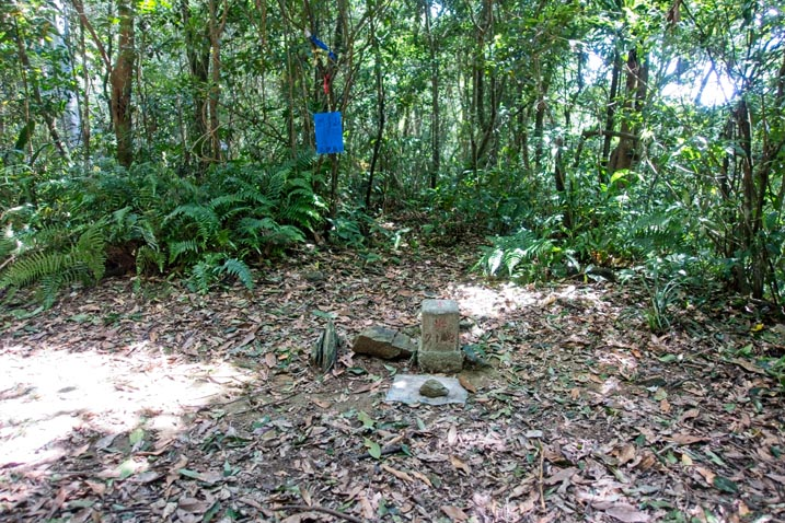 WangZiShan 網子山 Triangulation marker in center of patch of open area - blue sign in back on tree