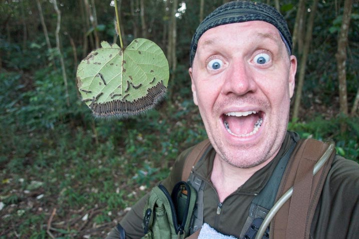 Me taking a selfie next to a large leaf with a LOT of caterpillars side by side eating it