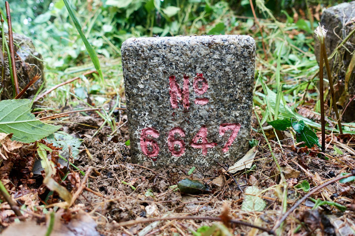 PenMaoLiShan - 盆貿里山 peak marker - No 6647 written on it