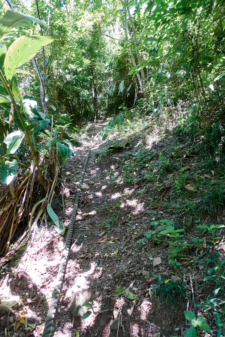 Somewhat steep trail with a thick rope in center of trail - grass and trees on either side