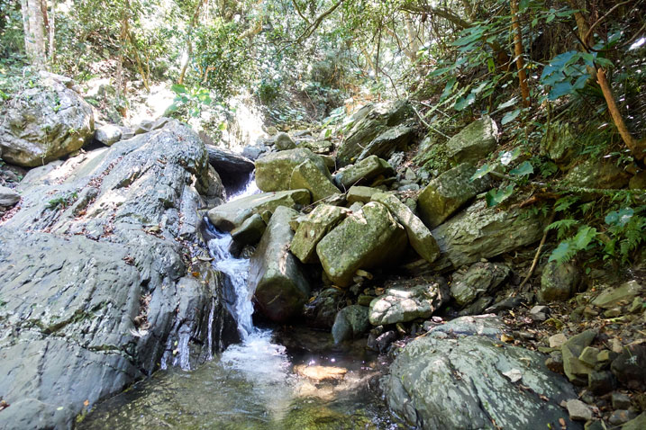 Rocky stream - water flowing down - trees in background
