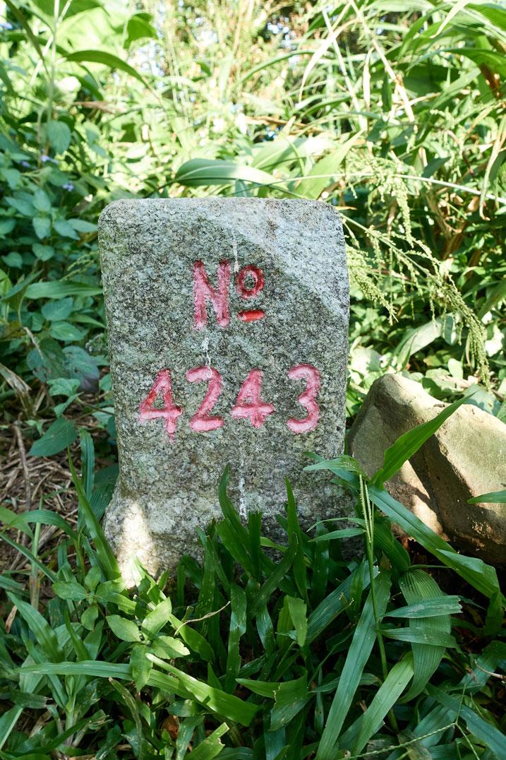 NuRengShan - 女仍山 triangulation marker - No 4243