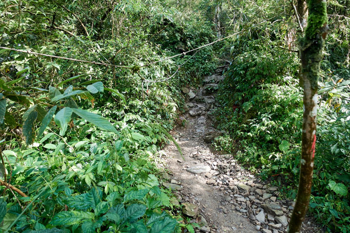 Rocky trail with rope to aid hikers