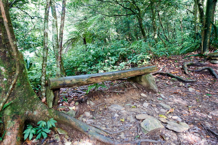 Bench made from mountain tree next to trail