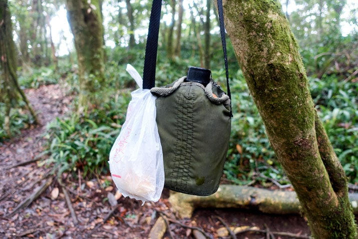 Canteen and someone's lunch hanging from a tree in the forest