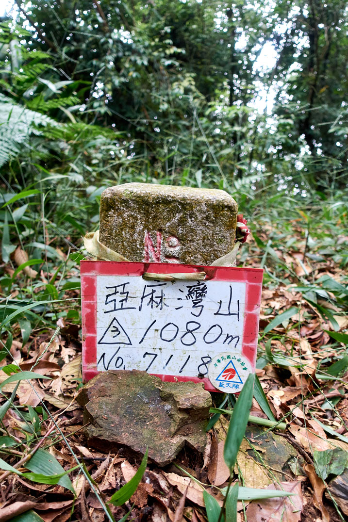 Triangulation stone with sign in front of it