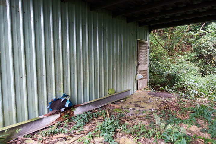 Green abandoned mountain house closup