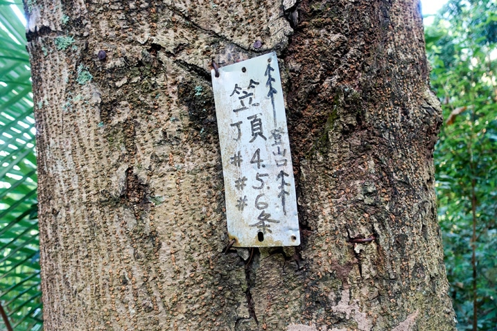 Small sign attached to a tree