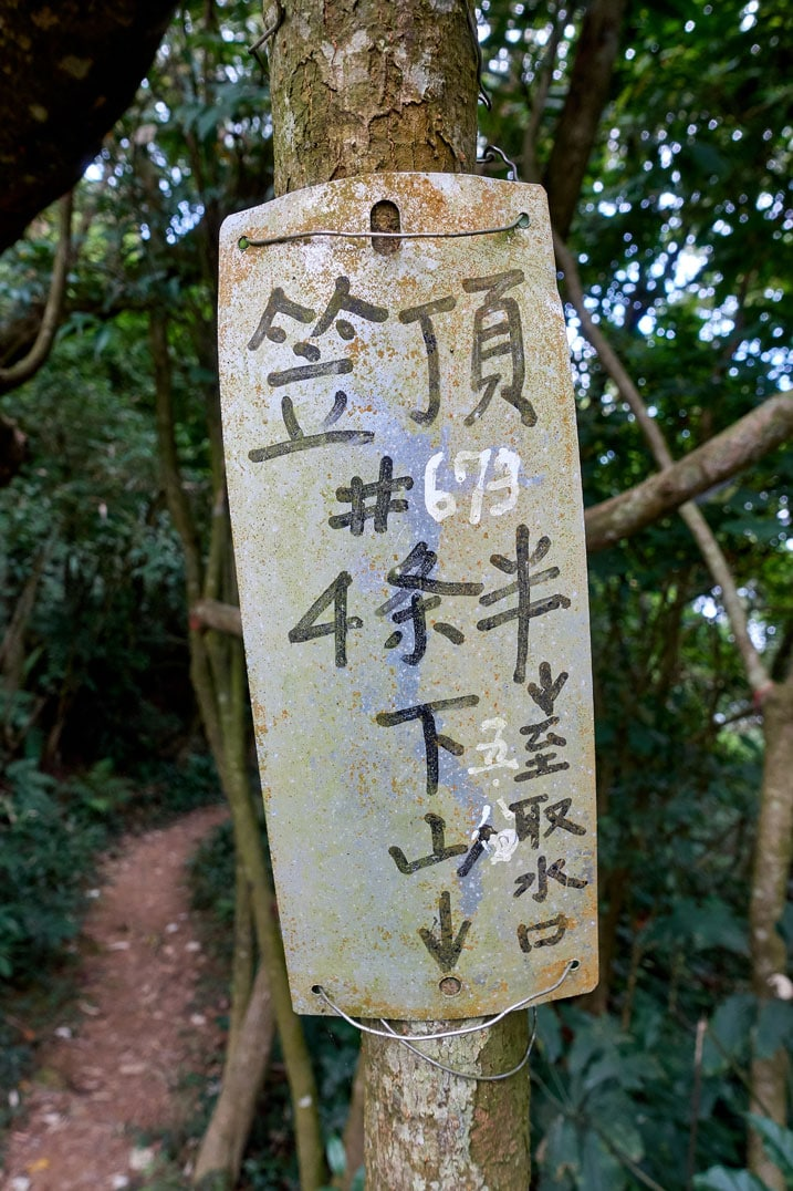 Sign with Chinese attached to a tree