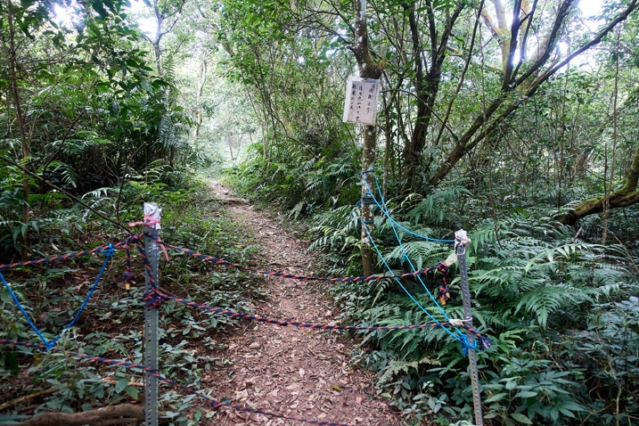 Ropes strung up to block a trail