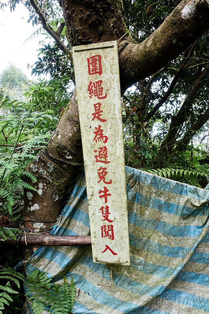 White sign in Chinese attached to tree