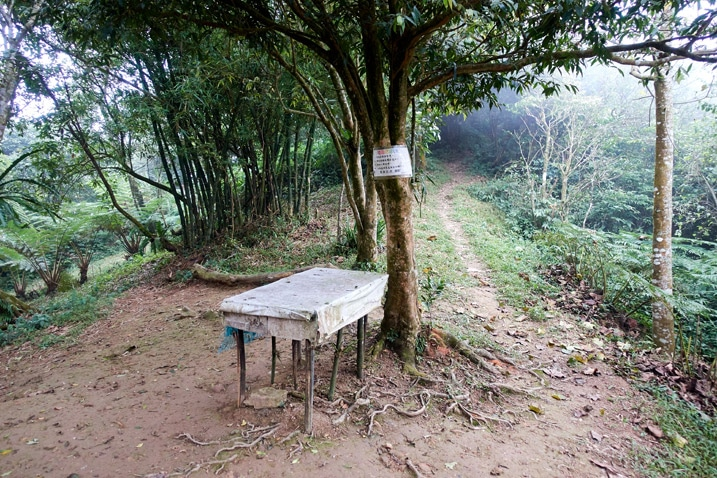 Table next to tree - tree has sign attached - trail goes off to the right of the tree
