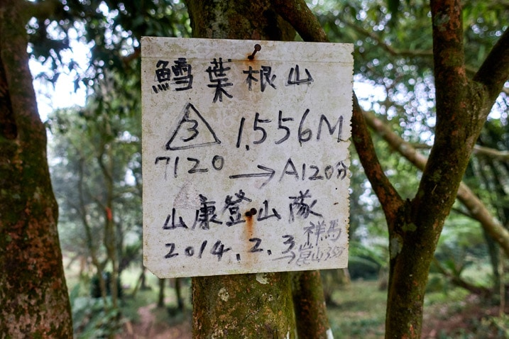 Sign in Chinese attached to a tree