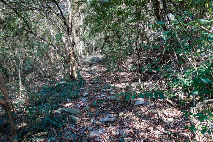 Trail going up mountain - ZuMuShan 足母山