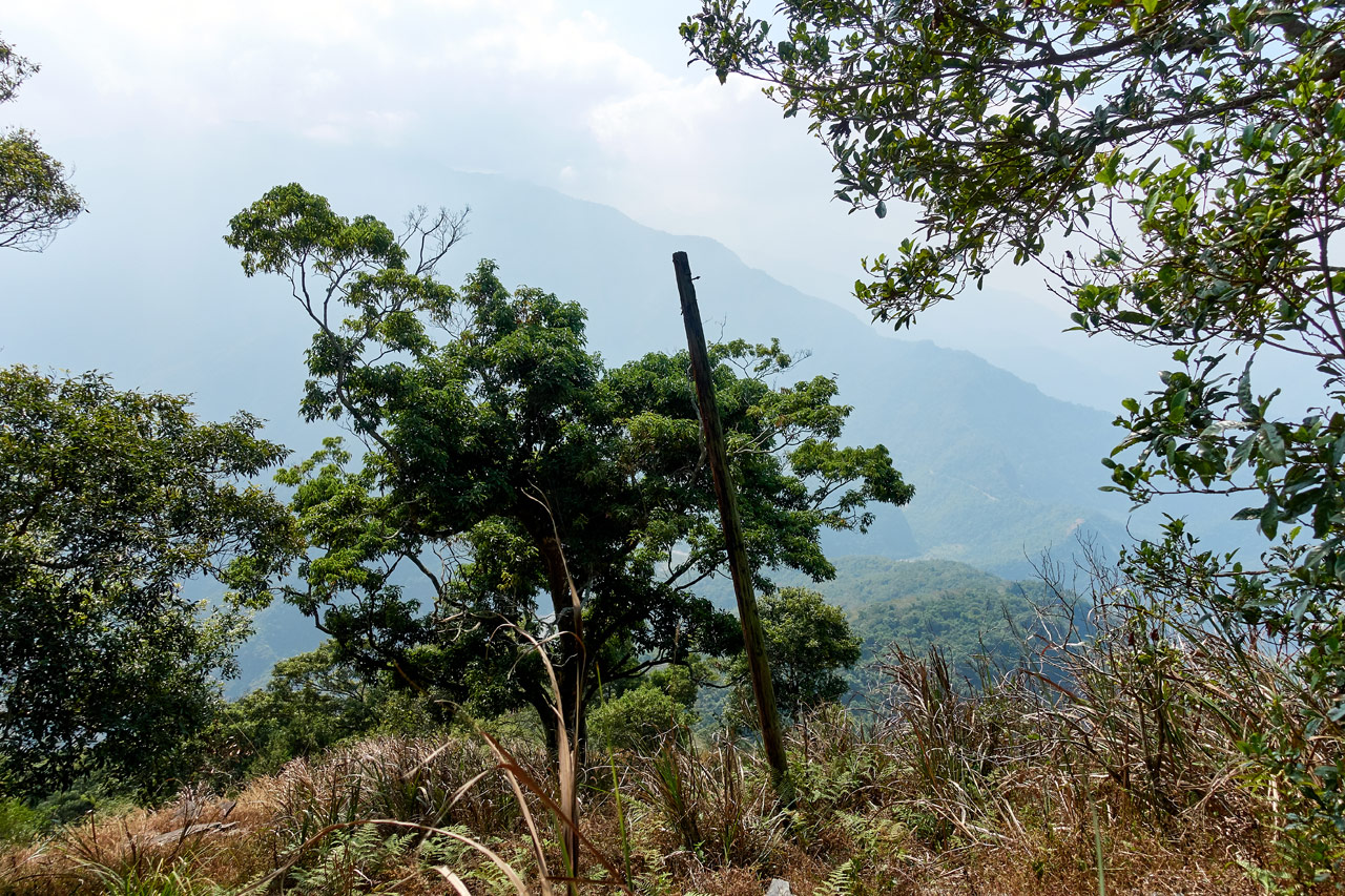 Lone old telephone pole in middle of dead greass - mountains behind - ZuMuShan 足母山 trail