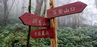 Three red signs on pole in forest