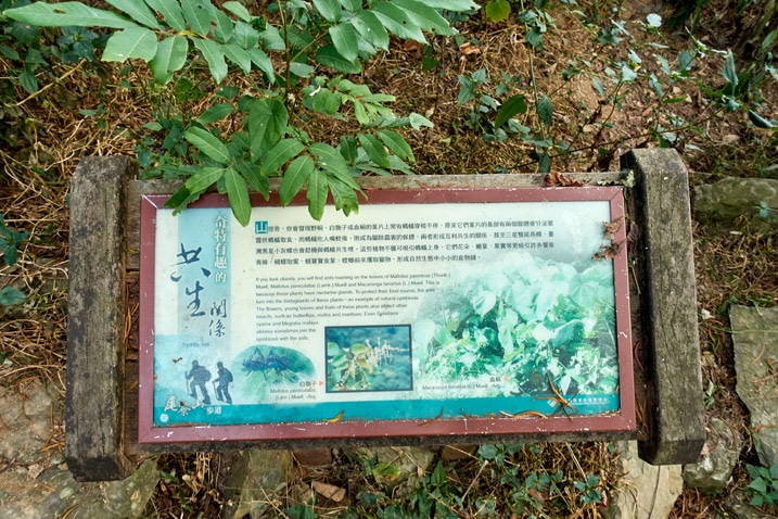Looking down at a signboard - WeiLiaoShan Hike – 尾寮山