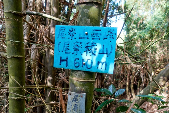 Blue sign attached to a bamboo tree - WeiLiaoShan West peak – 尾寮山西峰