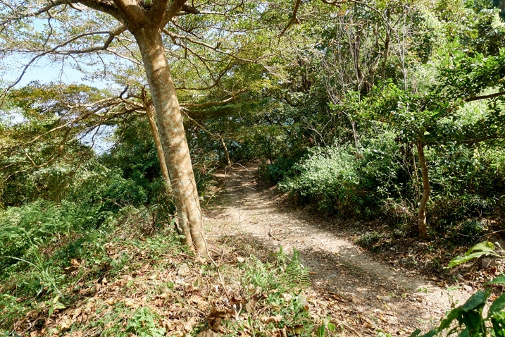 Mountain trail - WeiLiaoShan Hike – 尾寮山