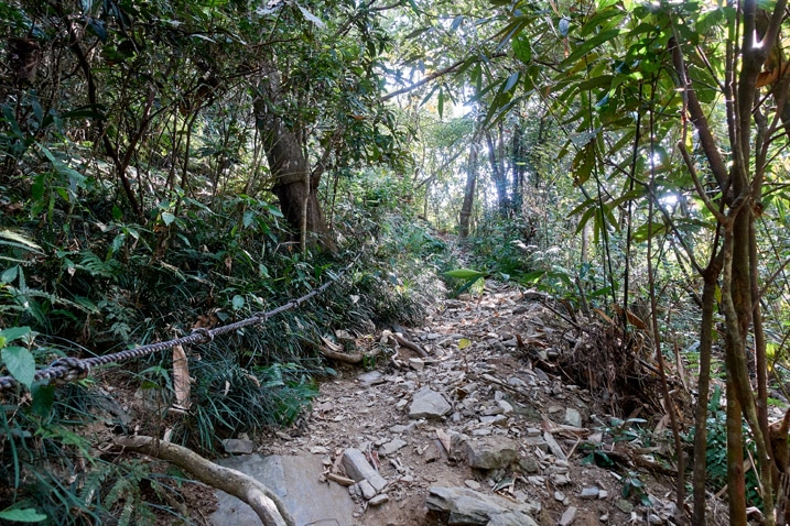 Rocky trail with a rope to the left - trees all around - WeiLiaoShan Hike – 尾寮山