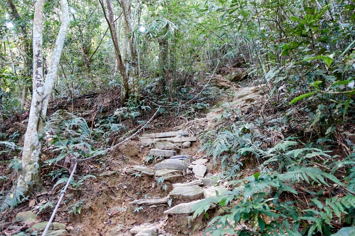 Rocky trail up a mountain - trees on either side - WeiLiaoShan Hike – 尾寮山