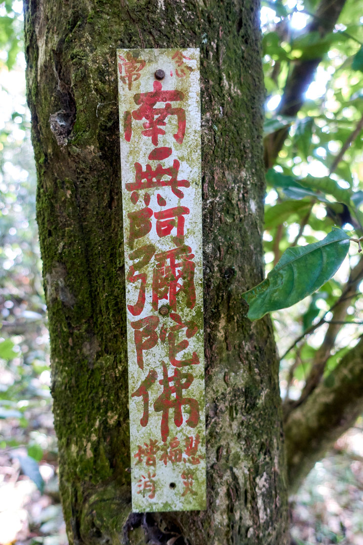 Long up and down sign attached to tree with red lettering in Chinese - WeiLiaoShan Hike – 尾寮山