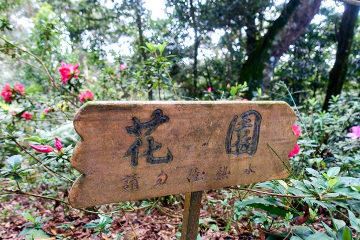 A wooden sign with flowers behind it - WeiLiaoShan 尾寮山 trail