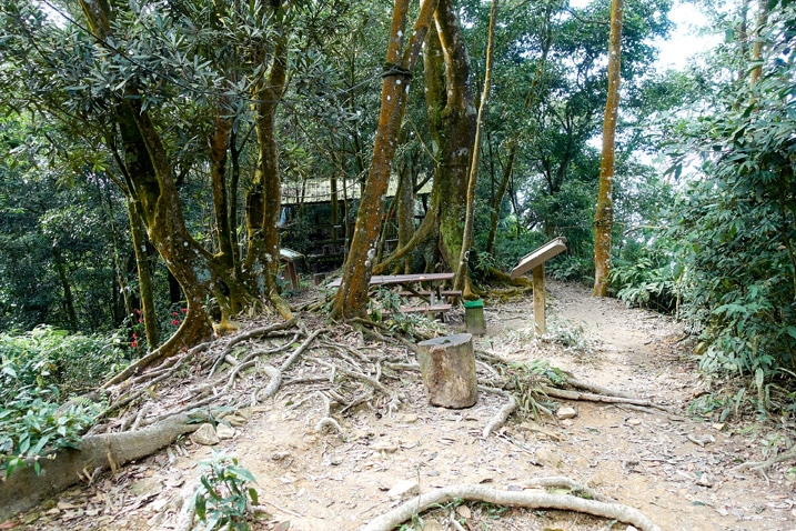 A dirt area with trees growing - structure in the background - WeiLiaoShan 尾寮山 trail