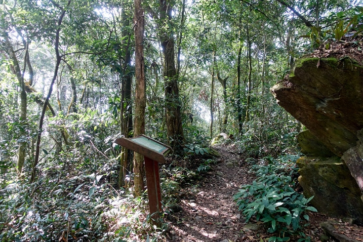 A large sign is next to a single track trail - trees all around - WeiLiaoShan 尾寮山 trail