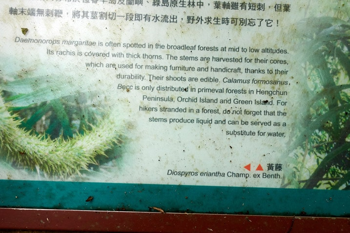 Closeup of sign talking about a particular plant - WeiLiaoShan 尾寮山 trail