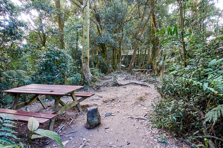 Rest area - picnic table and pavilion amongst many trees - WeiLiaoShan 尾寮山 trail
