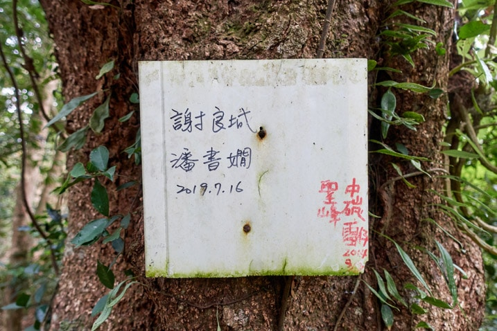 Faded white sign with Chinese writing nailed to a tree - BeiHuLuShan Peak 北湖呂山