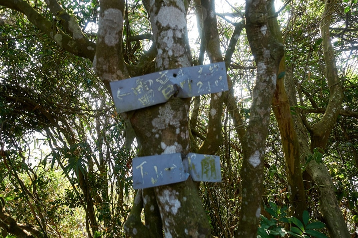 Two trail signs written in Chinese - 旗月縱走 - 旗尾山