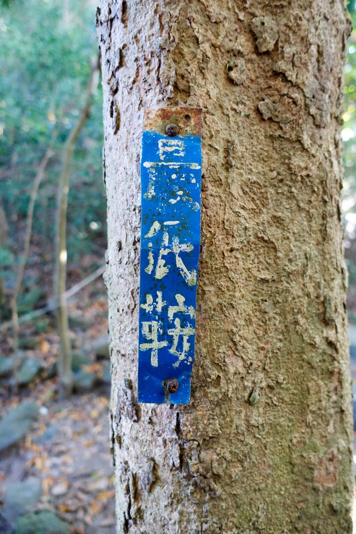 Blue sign written in Chinese attached to tree - 旗月縱走