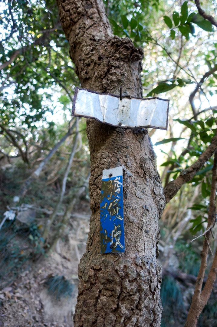 Tree with two metal signs in Chinese nailed to it - 旗月縱走 - 福美山