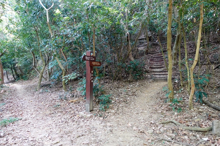 Fork in trail - one going up with stairs - sign post - 靈山步道 - 旗月縱走