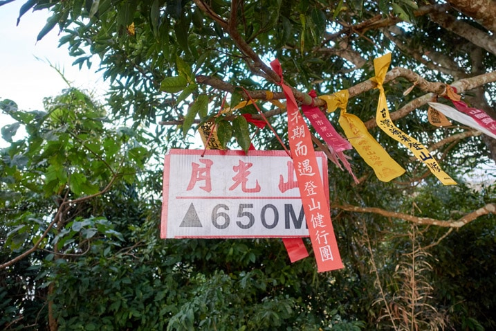 Red and white sign and many ribbons hanging from tree - 旗月縱走 - 月光山