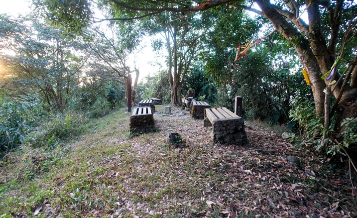 YueGuangShan Peak - Benches and trees - 旗月縱走 - 月光山