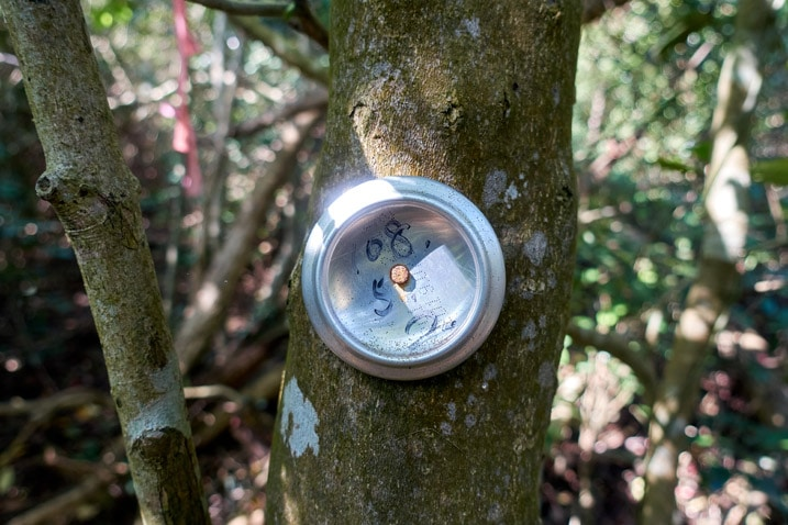 Bottom of can nailed to a tree with a date written on it - XinZhiShan - 新置山