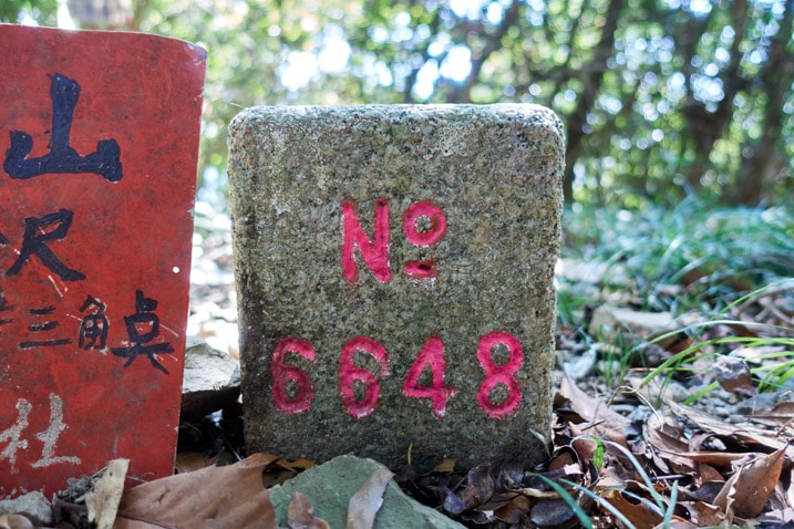 Triangulation stone at XinZhiShan - 新置山 Peak - No. 6648