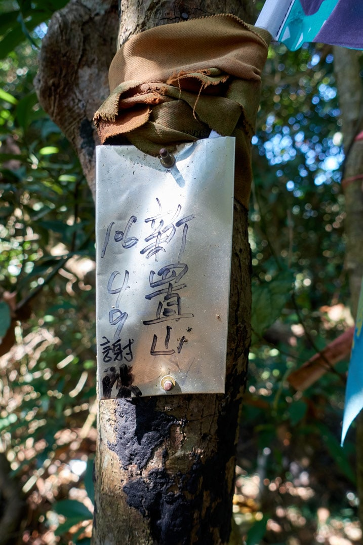 Metal sign attached to tree with Chinese writing - XinZhiShan - 新置山 Peak