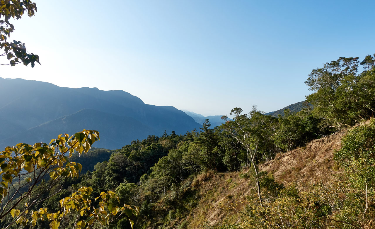Old landslide with new growth - mountains in the distance - 蕃里山 - FanLiShan