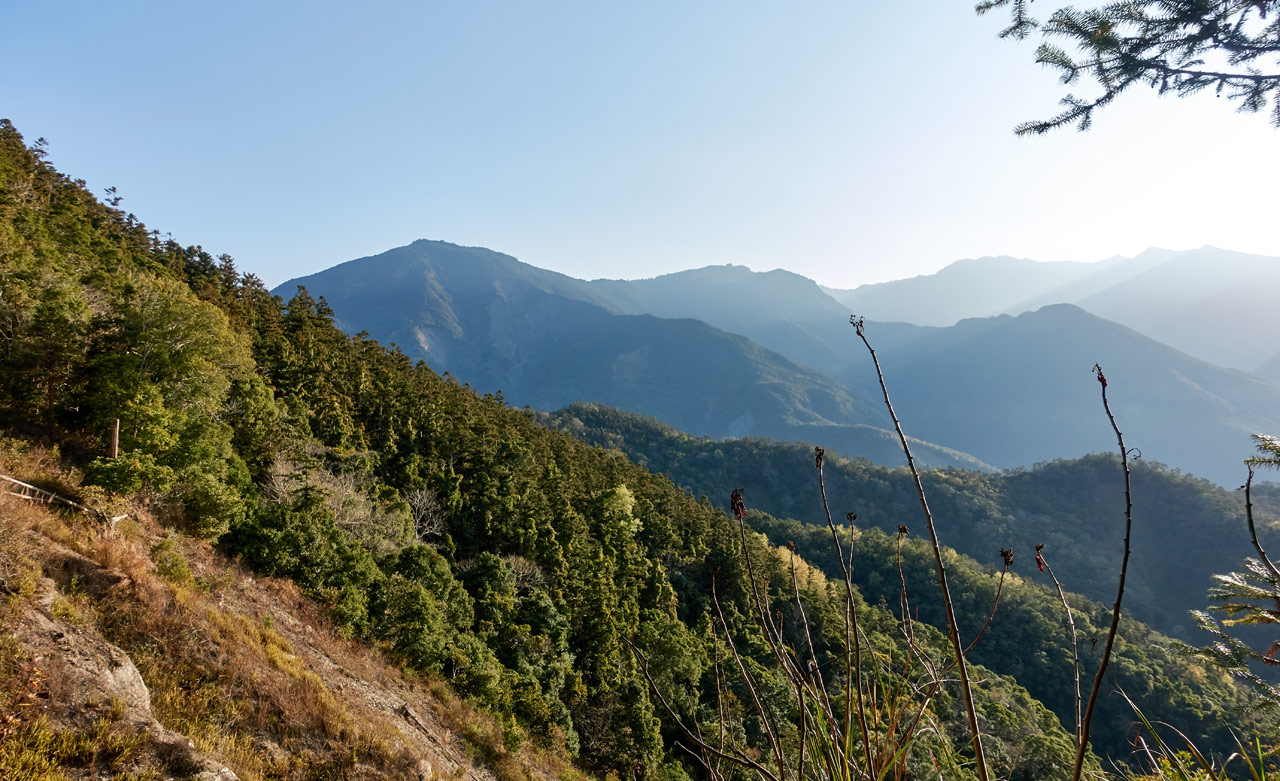View of mountains and forest - 蕃里山 - FanLiShan